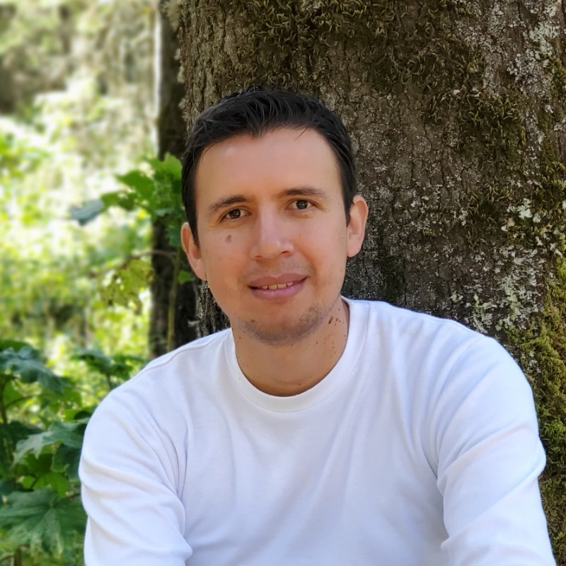 Alfonso Bravo